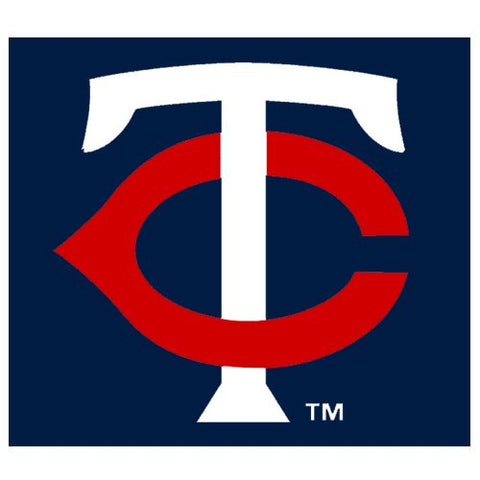 Minnesota Twins Rico MLB Small Static Decal