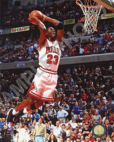 Chicago Bulls Michael Jordan 8x10 2 Handed Jam Photo