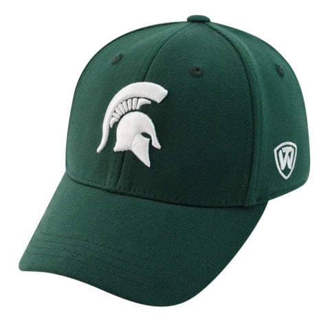 Mens NCAA Michigan State Spartans B.A.F. Green Memory Fit Hat