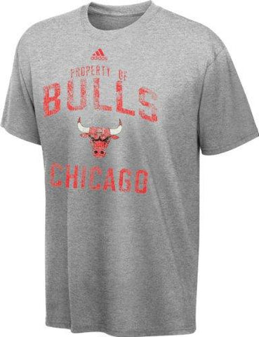 Youth Chicago Bulls Property Of Tee