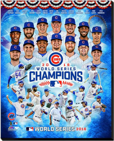 Chicago Cubs 2016 World Series Champions 16x20 Canvas - Pro Jersey Sports