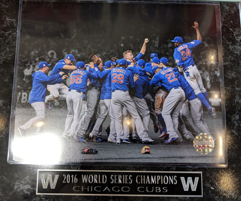 Chicago Cubs 2016 World Series Celebration Plaque