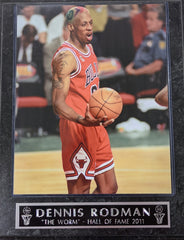 "Dennis Rodman Chicago Bulls ""The Worm"" Wall Plaque"