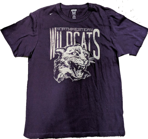 Tailgate Men's Northwestern Wildcats Mascot Honors Purple T-Shirt