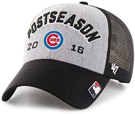 '47 Chicago Cubs 2016 NL Central Division Champions Locker Room Adjustable Hat