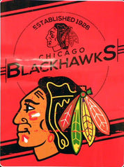 "Chicago Blackhawks Stamp Plush Raschel Throw Blanket, 60"" x 80"""