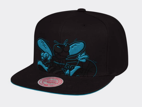 b157b1df This product has been added to your cart! March Madness · Home · Hats;  Charlotte Hornets Mitchell & Ness NBA Cropped XL Logo Snapback Cap