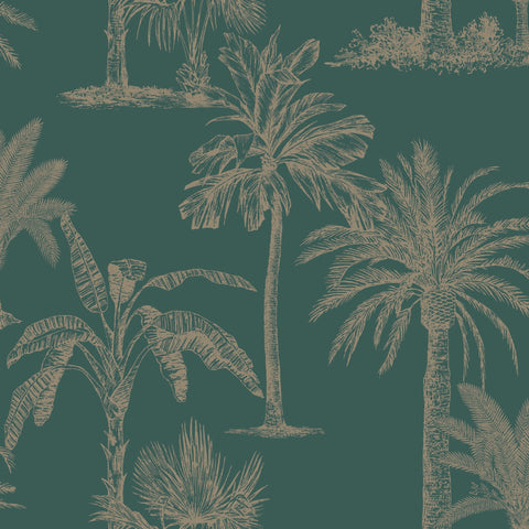 Holden Statement Wallpaper | Tropical Tree Teal  | 12820