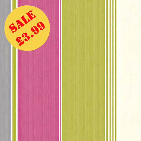 SALE Debona Wallpaper | Feathers Stripe Pink/Lime | 30292