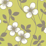 SALE DecorLine Wallpaper | Freud Daisy Lime Green | DL20228