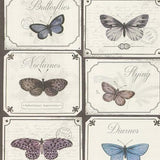 Vintage Butterfly Wallpaper | SALE Rasch Wallpaper | WonderWall