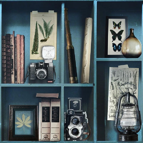 Graham & Brown Wallpaper | Curiosite Biblio Bleu | 100277