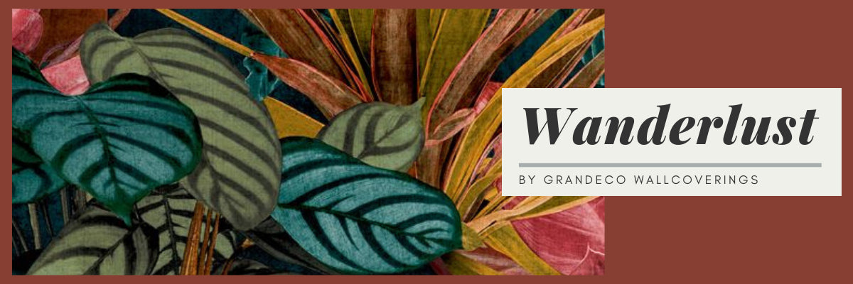 Shop Wallpaper Trending Wallpaper Uk Wonderwall By Nobletts