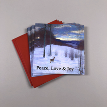 Load image into Gallery viewer, Collection Christmas Card Packs