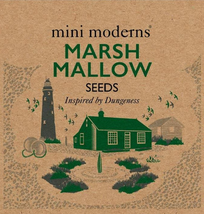 Seeds - Marsh Mallow
