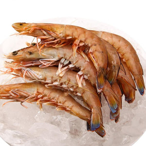 South Australia King Prawn (Green)
