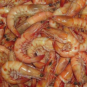 South Australia King Prawn (cooked)