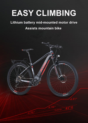 HRTC XDS Electric Bicycle 240w