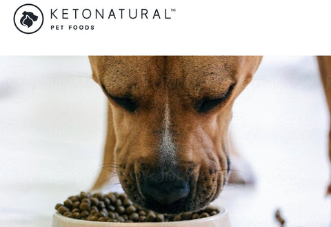KETO NATURAL DIET FOR DOGS - Don't Forget our Furry Friend's Health