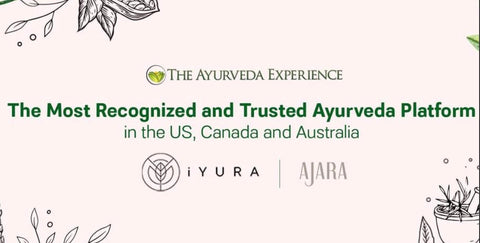 THE AYURVEDA EXPERIENCE - Ayurvedic Skin Products