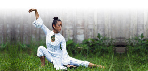 LEARN QIGONG - Visit our Partner - White Tiger Qigong