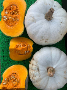 pumpkin white 600g