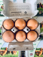 Eggs large Free range x 6