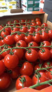 Tomatoes Cherry Vine pack