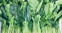 Load image into Gallery viewer, Baby Spinach - 125g bag