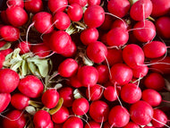 Radishes - bunch