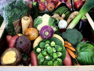 The Greengrocers Autumn Veg Box