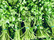 Parsley - bunch