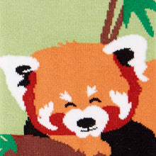 Load image into Gallery viewer, Tale of the Red Panda - Knee Highs by Sock it to Me
