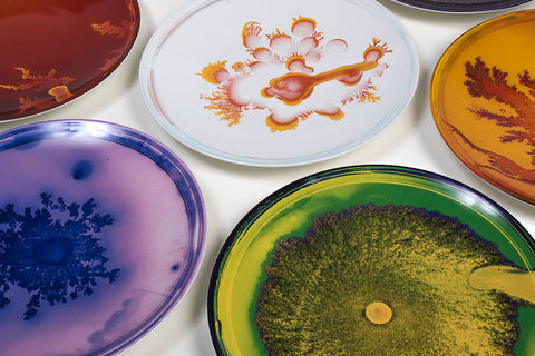 Vik Muniz Plate Set, Petri