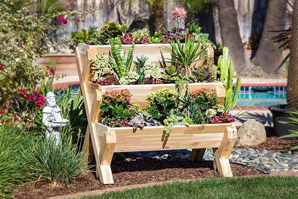 Introduction to Container Gardening