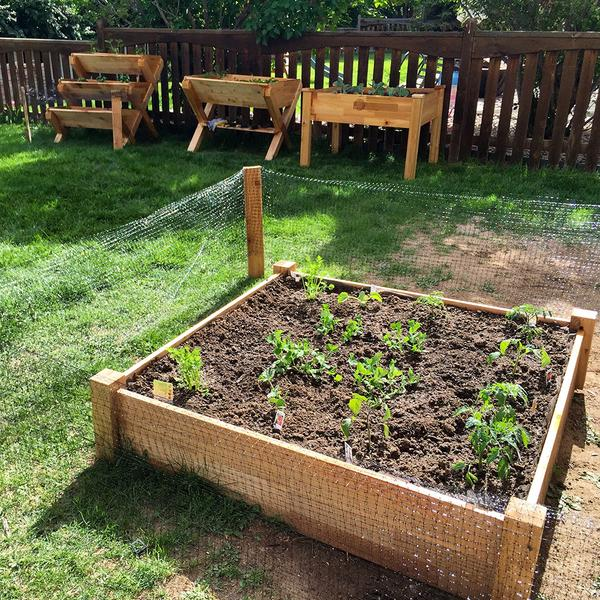 Planting Your Garden