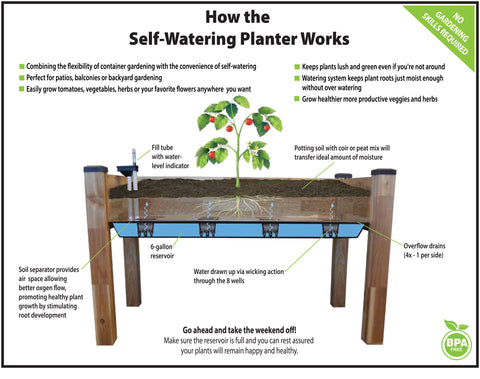 Self-watering planter - How it works