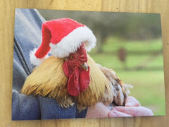 Holiday Photo Card Emmet