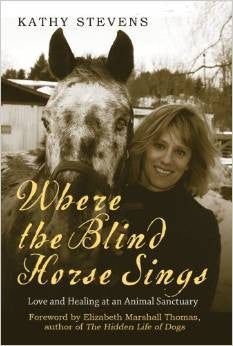 book Where The Blind Horse Sings Kathy Stevens