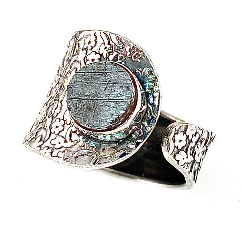 Gibeon Meteorite Sterling Silver Adjustable Floral Pattern Ring