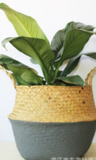 Half and Half Seagrass Basket (large)