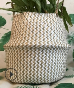 Cross woven Seagrass Basket (Medium)