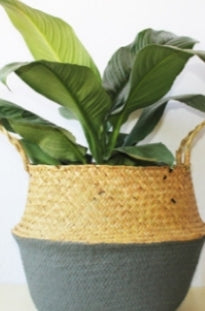 Half and Half Seagrass Basket (Medium)