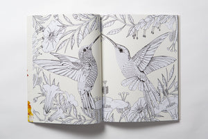 Birdtopia Colourly Adult Coloring Book