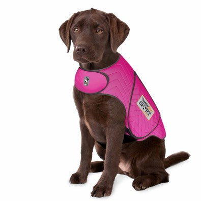 thundershirt sport fuchsia for dogs s