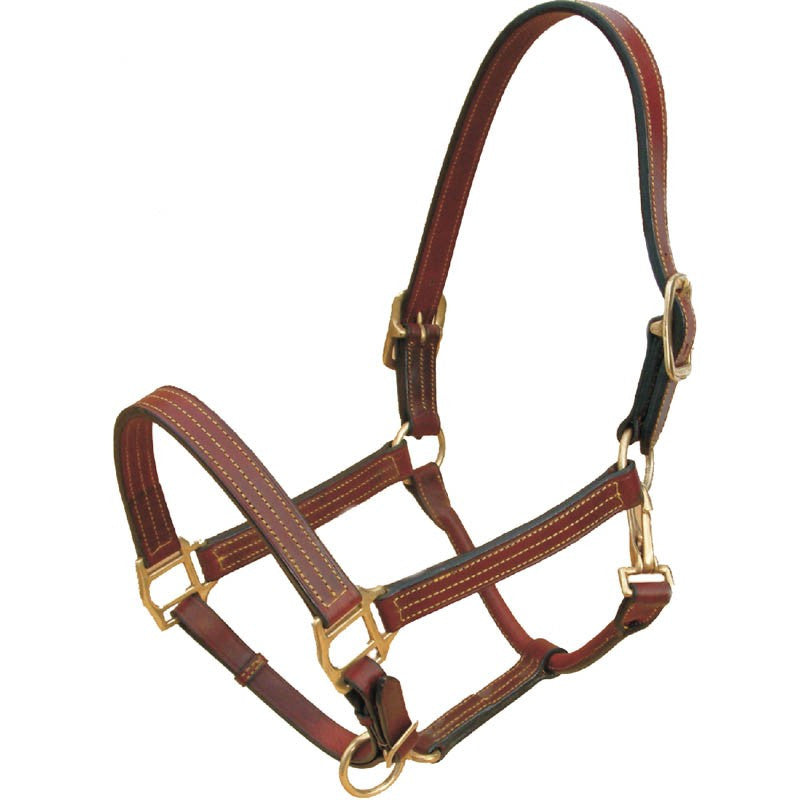 Leather Bromont Halter