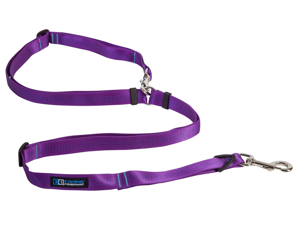 Canine Equipment - Beyond Control Leash - Purple