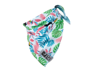 RC Pets - Zephyr Cooling Bandana - Toucan NEW