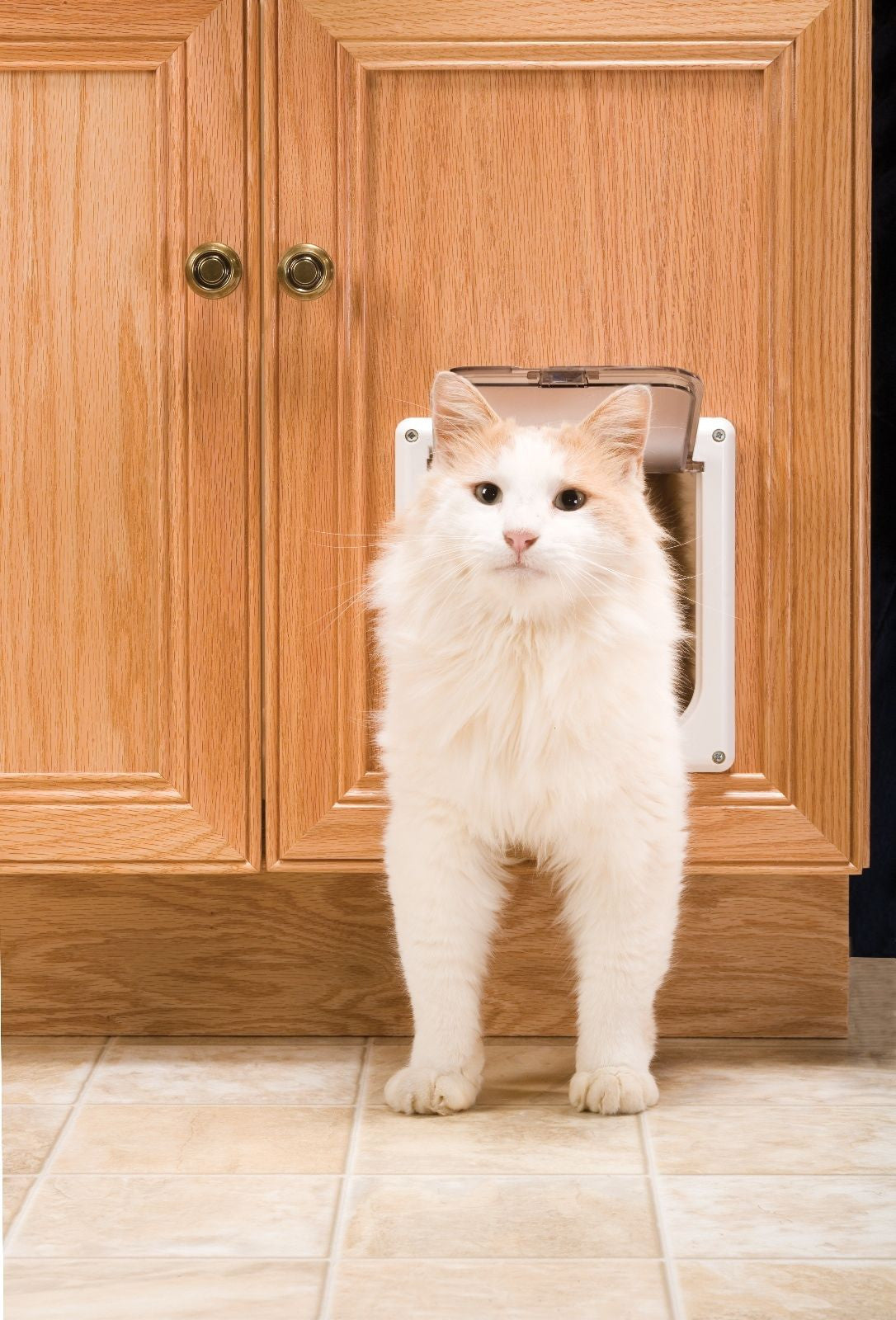 PetSafe - 2-Way Interior Cat Door