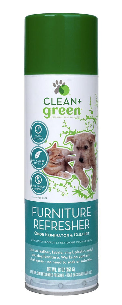 Clean + Green Furniture Refresher